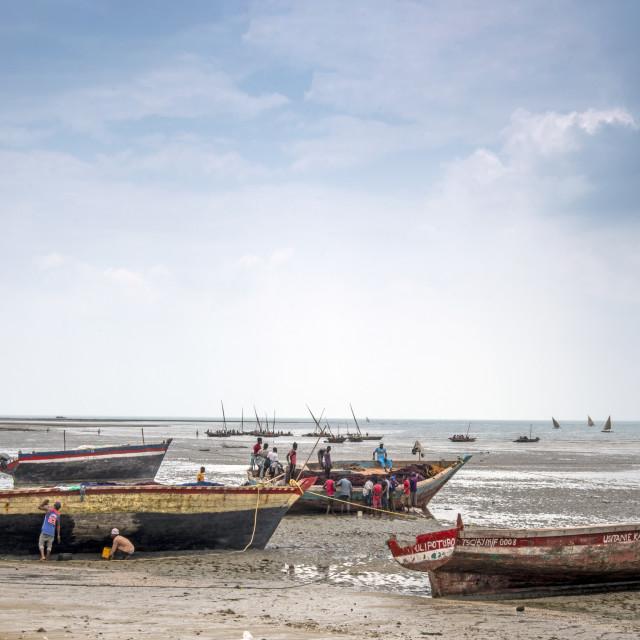"""""""Bagamoyo fishing harbour"""" stock image"""