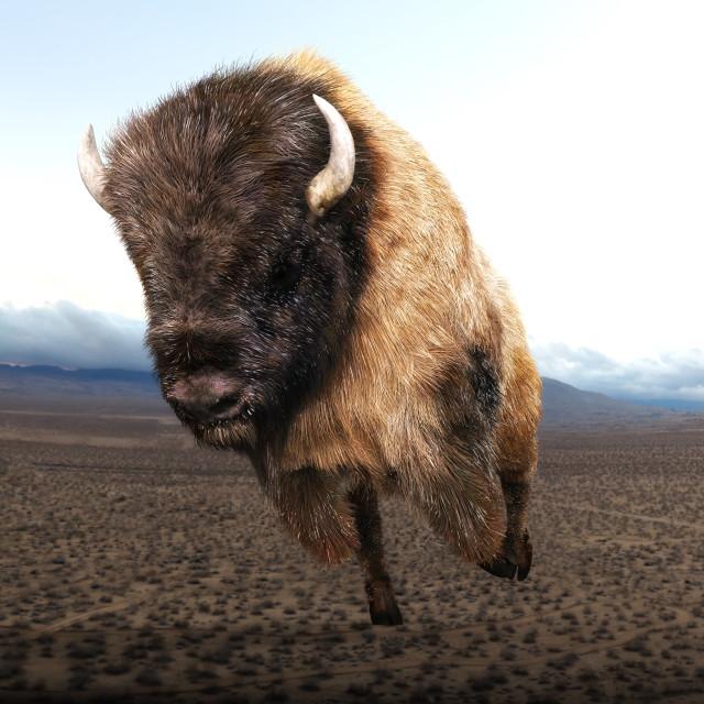 """""""Digital 3D Illustration of a Bison"""" stock image"""