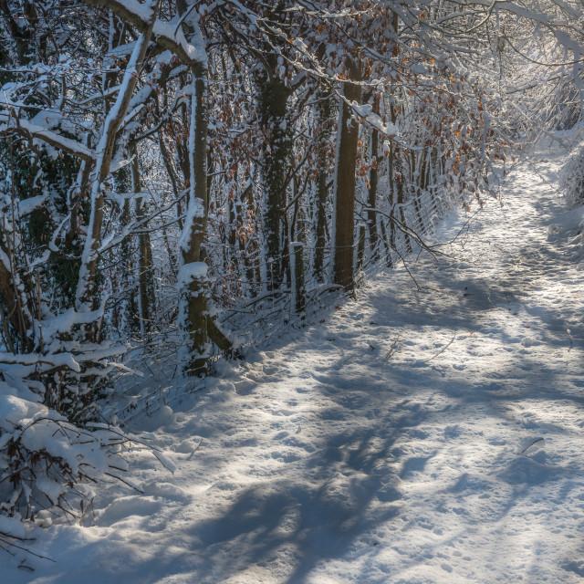 """Wales winter scene"" stock image"