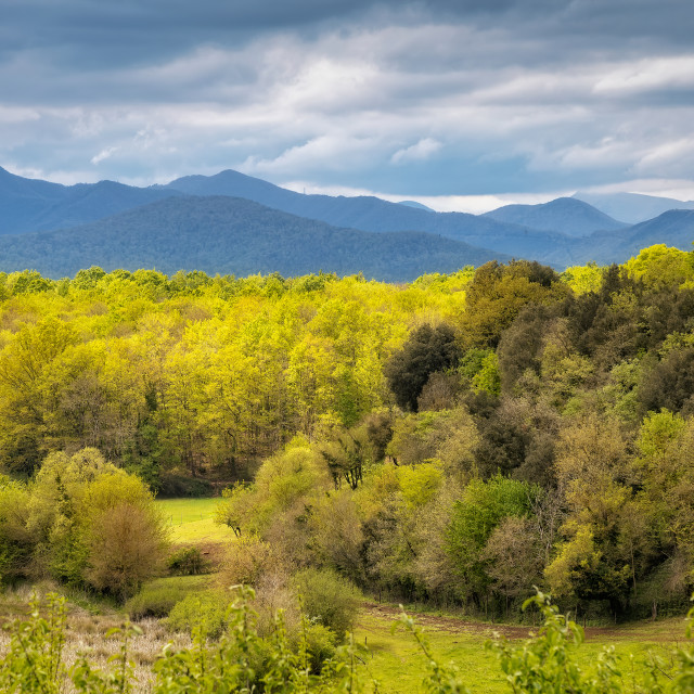 """Panoramic picture from valley of Garrotxa Volcanic Zone Natural Park"" stock image"