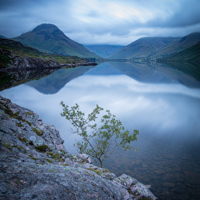 """Tiny Tree on Wastwater"" stock image"