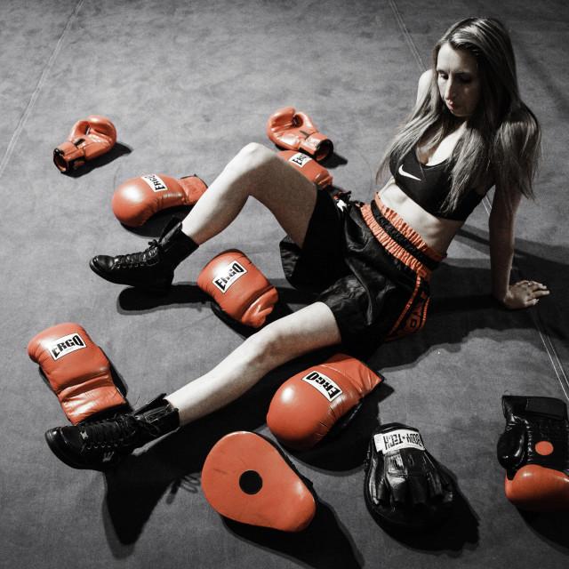 """Female boxer resting"" stock image"