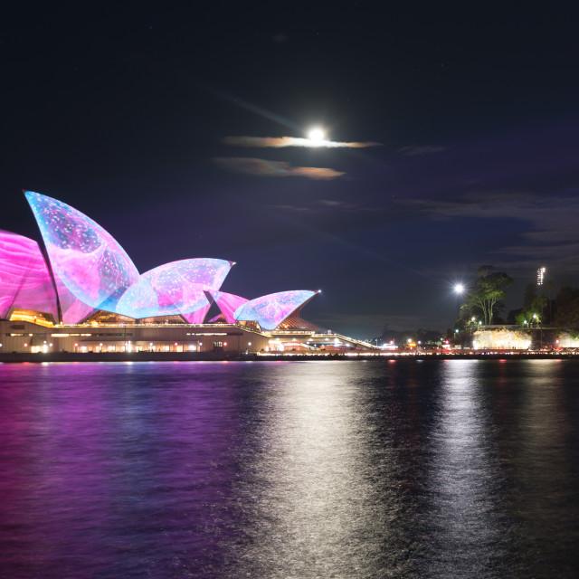 """Sydney Opera House // Sydney, Australia"" stock image"