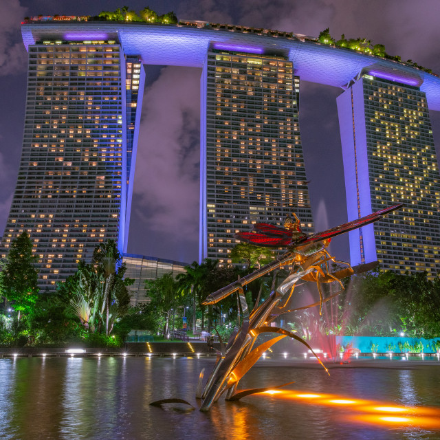 """Dragonfly Rider // Gardens by the Bay, Singapore"" stock image"