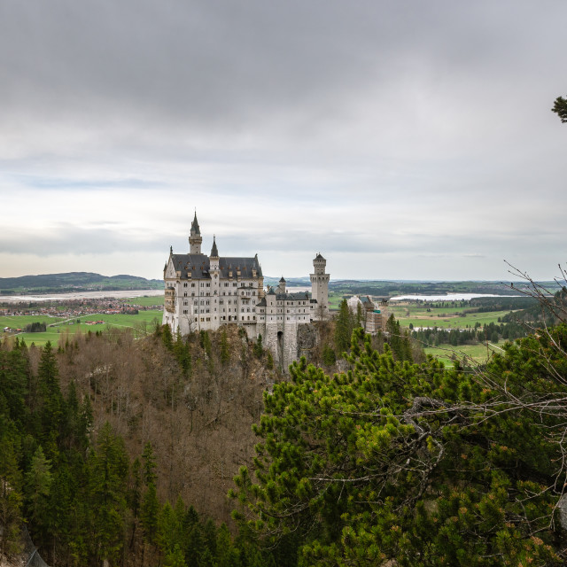 """Neuschwanstein Castle // Schwangau, Germany"" stock image"