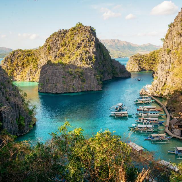 """Landscape of tropical island. Coron island. Philippines."" stock image"