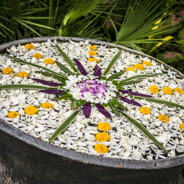 """""""Flower Mandela"""" stock image"""