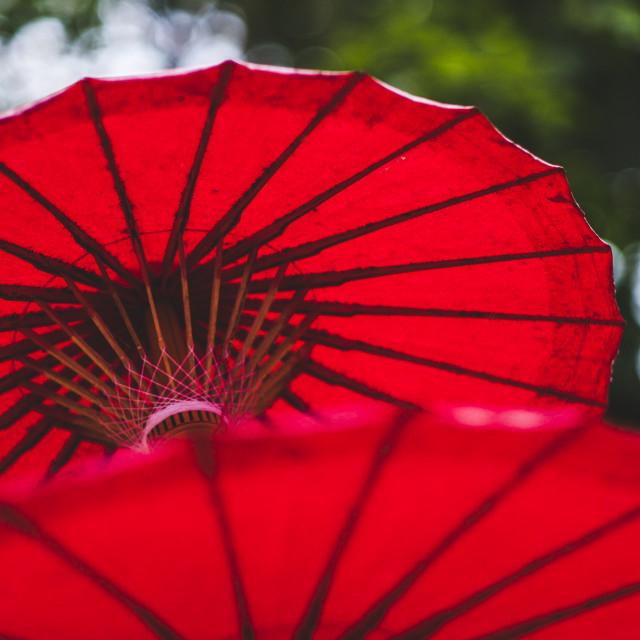 """Sun Umbrellas"" stock image"