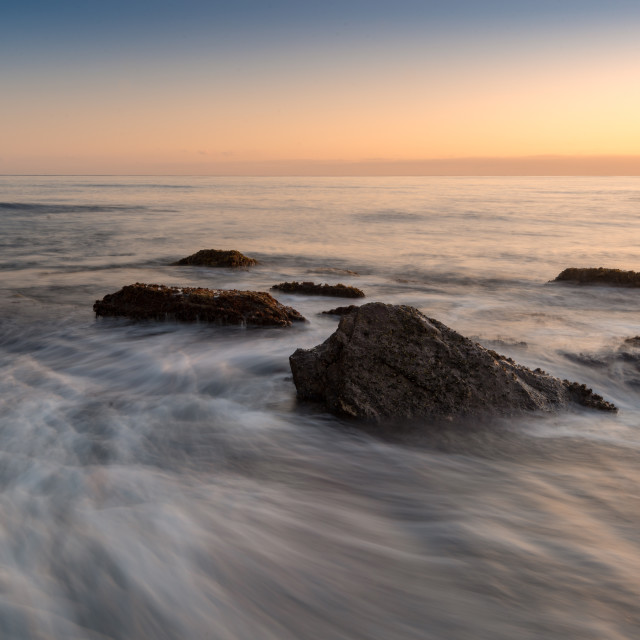 """""""Long Reef Headland at Sunrise // Sydney, Australia"""" stock image"""