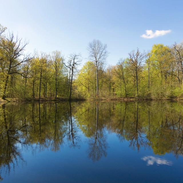 """Evées pond"" stock image"