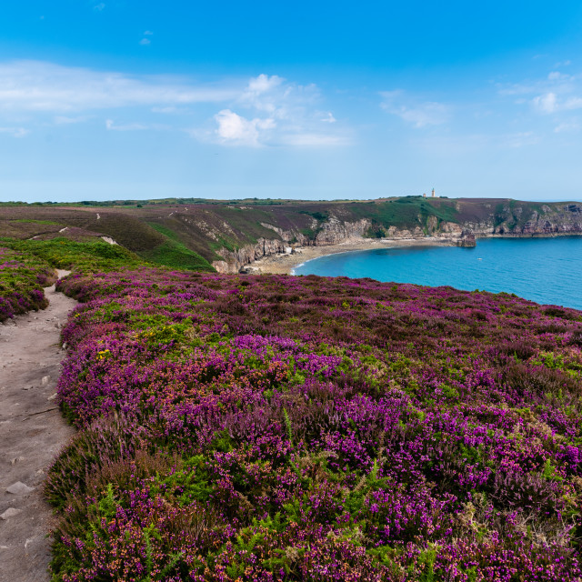 """Scenic view of Cap Frehel area in Brittany"" stock image"