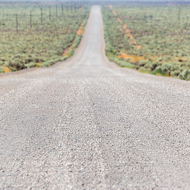 """Gravel Road in Southeast Oregon"" stock image"