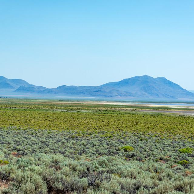"""""""Alvord Desert Landscape"""" stock image"""
