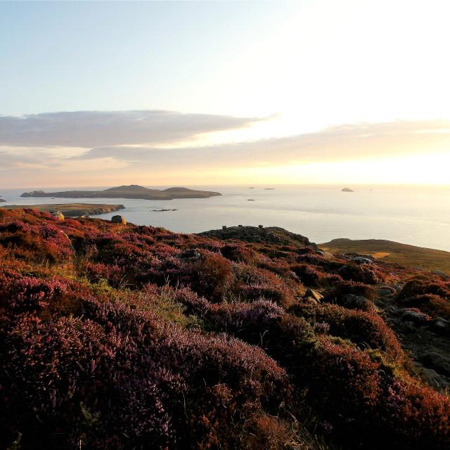 """Ramsey Island from Carn Llidi"" stock image"