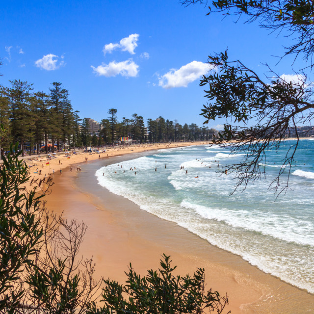 """""""View of Manly beach,"""" stock image"""
