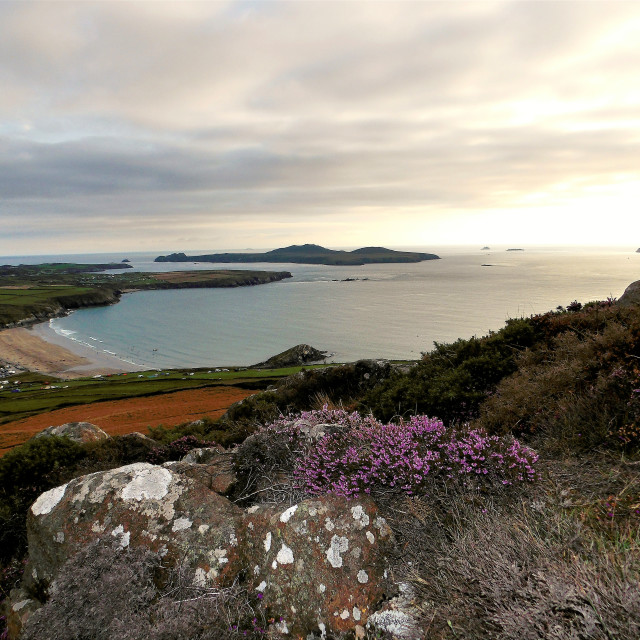 """View of Ramsey Island from Carn Llidi"" stock image"