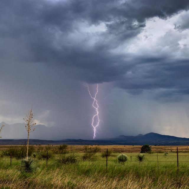 """Lightning strike from a monsoon thunderstorm"" stock image"