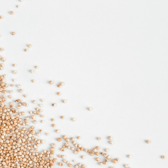 """quinoa on white, isolated one edge"" stock image"