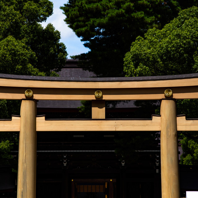 """Torii Gate in the Meiji Jingu Shinto Shrine in Tokyo, Japan"" stock image"