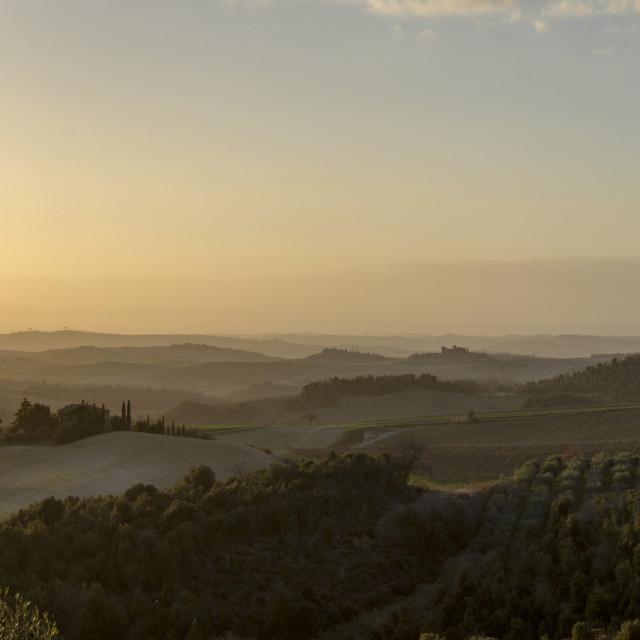 """""""Tuscany Sunset"""" stock image"""