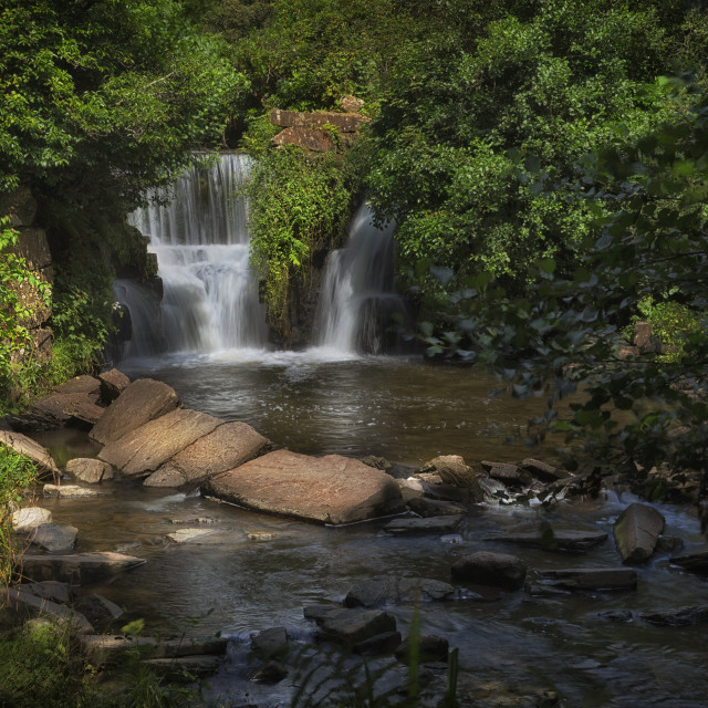 """""""Penllergare Woods waterfall"""" stock image"""