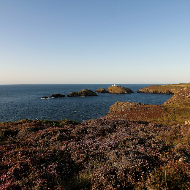 """""""Strumble Head on a summer evening in August"""" stock image"""
