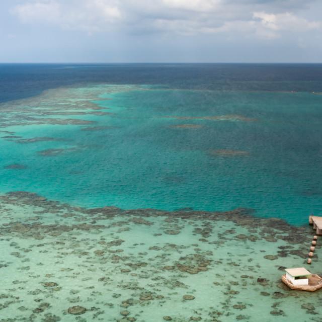 """Sudan coral reef"" stock image"