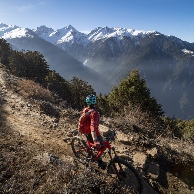 """""""A mountain biker takes a rest on an Enduro style single track trail in the..."""" stock image"""