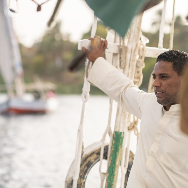 """An Egyptian man holiding the mast while sailng a traditional Felucca sailboat..."" stock image"