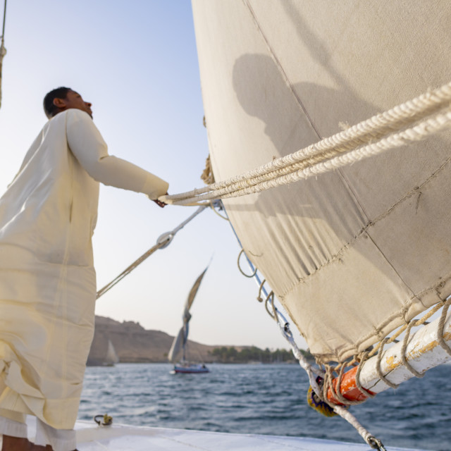 """An Egyptian man stands on the bow of a traditional Felucca sailboat with..."" stock image"