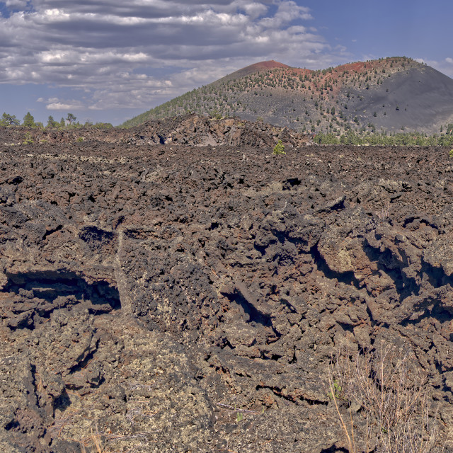 """""""Panorama of the western Bonito Lava Field at Sunset Crater Volcano AZ."""" stock image"""