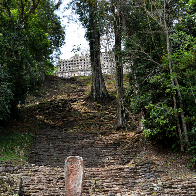 """""""mayan temples in yucatan"""" stock image"""