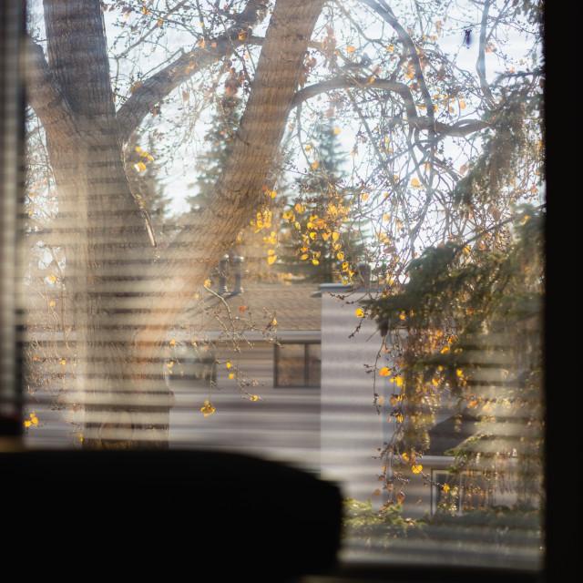 """""""Moody window"""" stock image"""