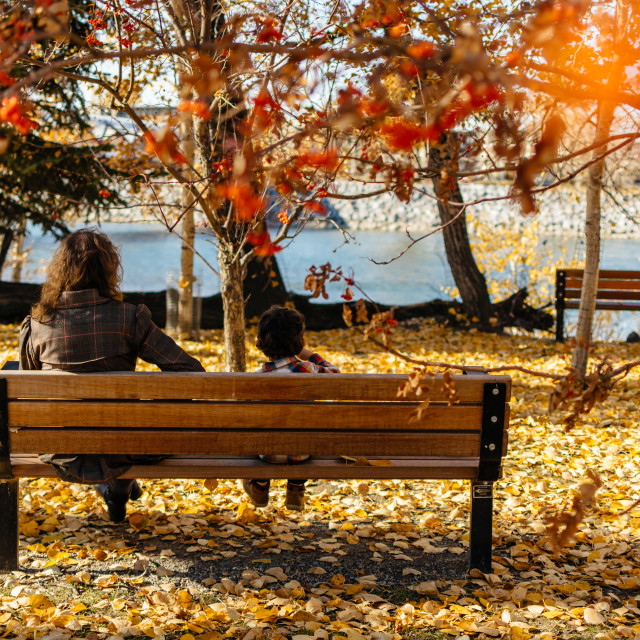 """Bench in Autumn"" stock image"