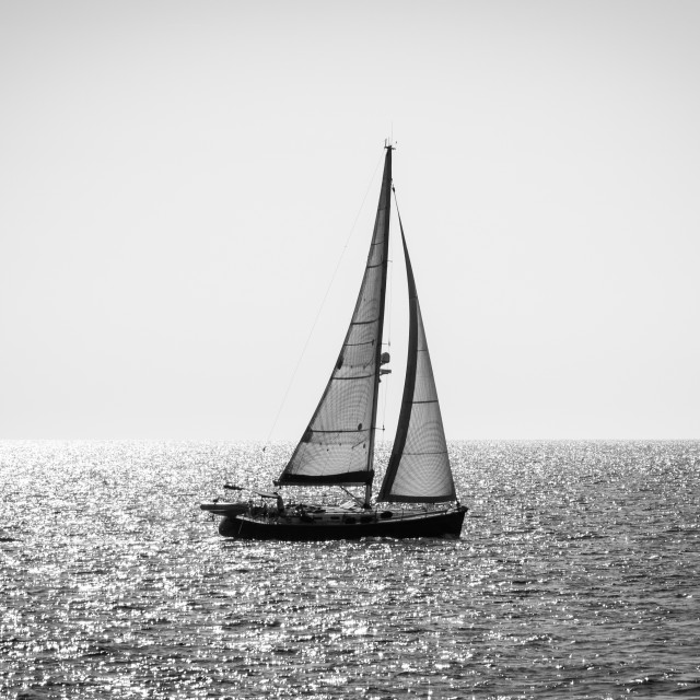 """Alone yacht sailing, backlight, black and white"" stock image"