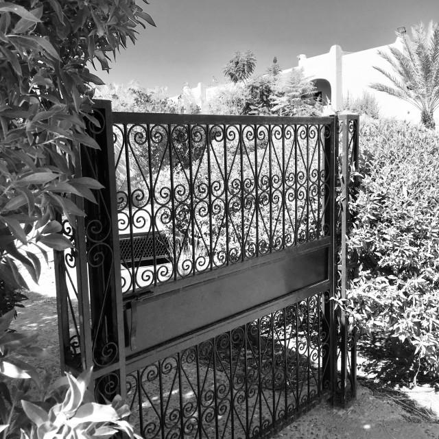 """""""Gate to a Marrakech garden."""" stock image"""