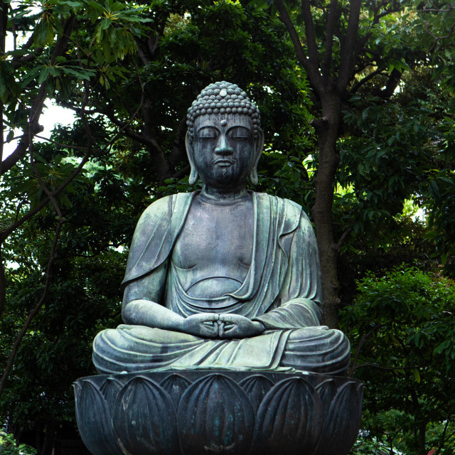 """Buddha Statue surrounded by trees"" stock image"