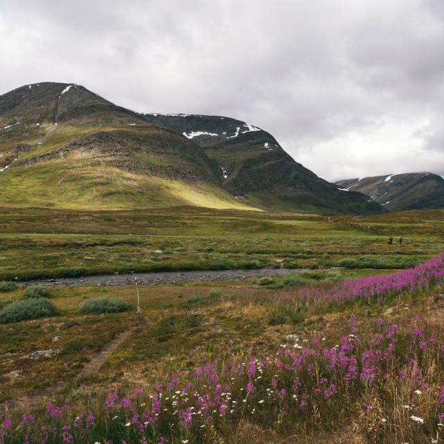 """""""Kungsleden Trail"""" stock image"""