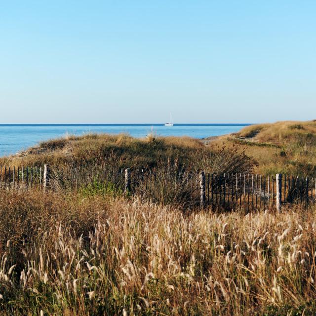 """""""Costa verde sand dunes"""" stock image"""