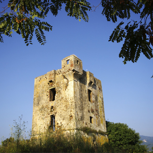 """""""Caselle Tower"""" stock image"""