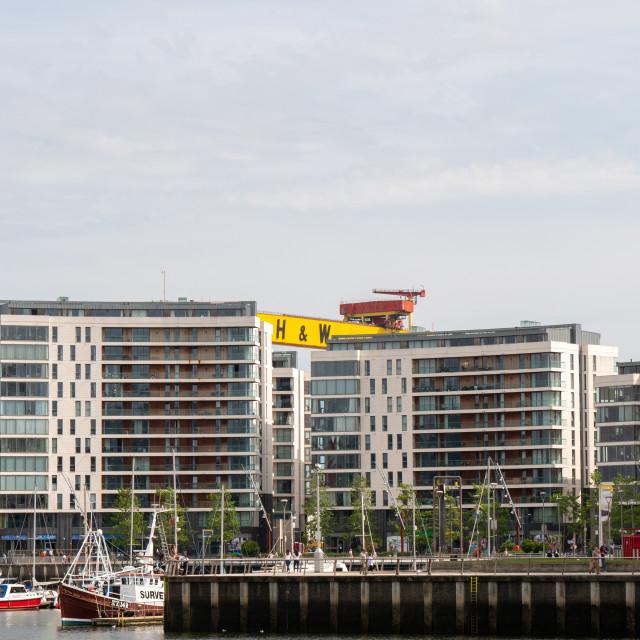 """Harland and Wolff cranes, Belfast, Northern Ireland"" stock image"