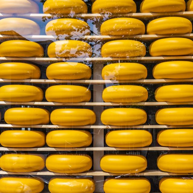 """Dutch cheeses on display. edam netherlands"" stock image"