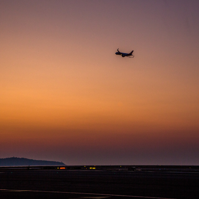"""Early morning flight"" stock image"