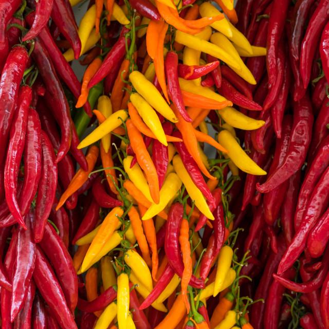 """Chillies"" stock image"