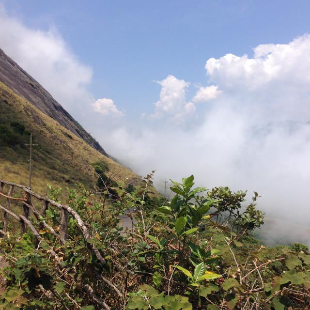 """""""Hills in kerala"""" stock image"""