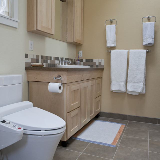"""""""Interiors of a bathroom of an accessible home"""" stock image"""
