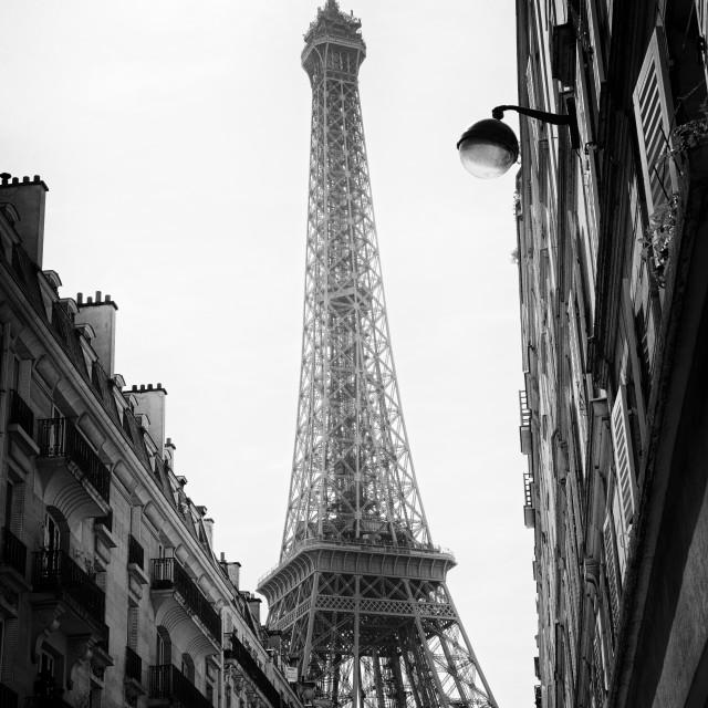 """""""Paris la grise"""" stock image"""