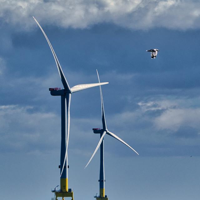 """Offshore wind turbines"" stock image"