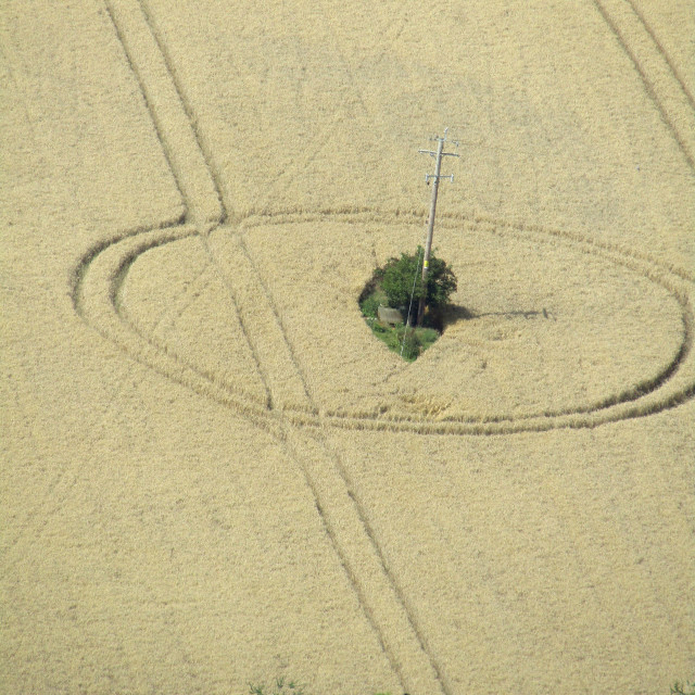 """Crop circles in Somerset field"" stock image"