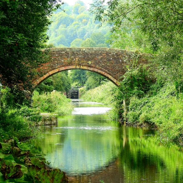 """Bridge over Bowbridge Canal"" stock image"